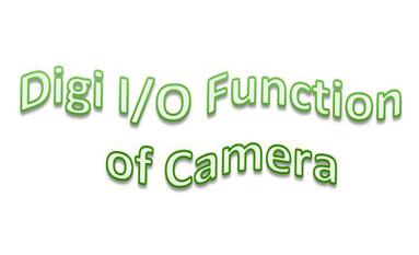 How to use the Digi I/O of home security IP camera?