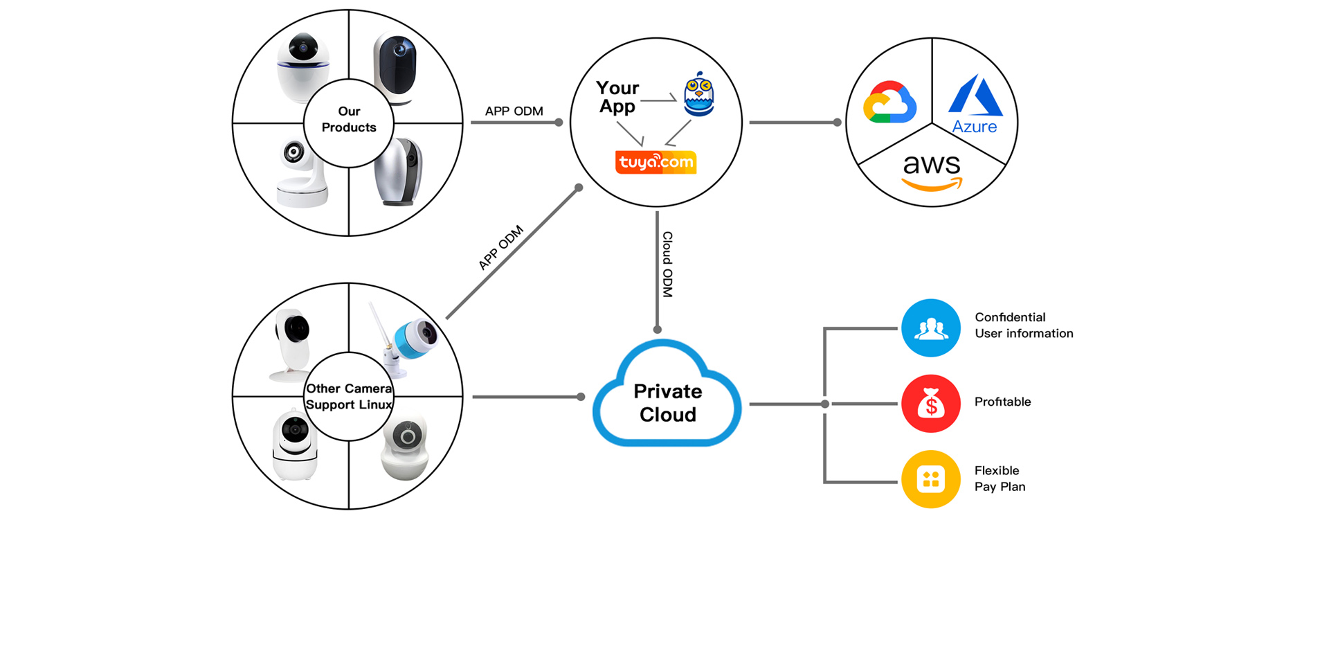 sdk-open-app-customized-cloud-service